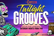 Twilight Grooves - Garden Party