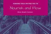 Nourish and Flow Yoga - June Series