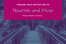 Nourish and Flow Yoga - June Series