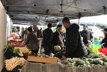 Marina Mirage Farmers Market