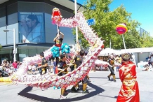 Dragon + Lion Dance and Kung Fu Show At Multicultural Festival