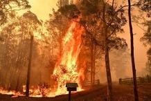 Hobart fire forum