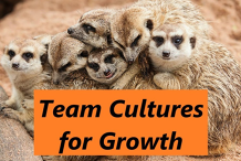 Organisational Team Cultures for Growth - ShareTree Online Recording