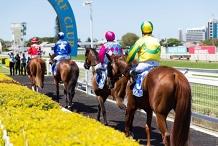 Gold Coast Cup Raceday