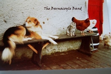 Basement Session: The Barnacoyle Band