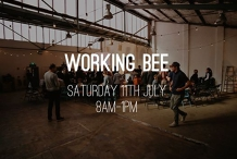 Working/Cleaning Bee
