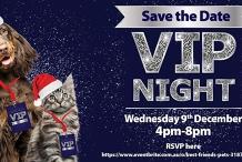 Best Friends Pets Tweed Heads - VIP Night