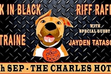 Rock for Rescue Dogs