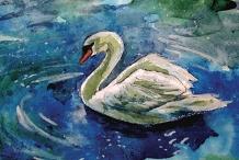 Swan Lake - WellCo Leichhardt (July 31 7pm)