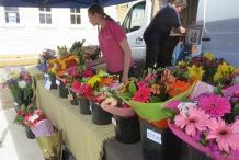 Goulburn Lilac City Festival Markets