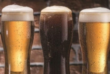 Mudgee Craft Beer and Cider Festival
