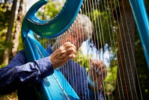 Branch Out: Harp Meditations