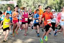MAAS Group Dubbo Stampede Running Festival