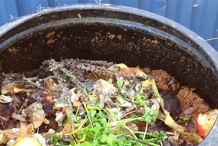 Small space composting