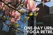One-Day Urban Yoga & Wellness Retreat