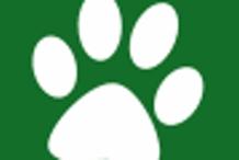 Dallas Pets Alive! Volunteer Orientation