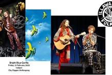Illawarra Folk Club-Bright Blue Gorilla