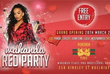 Wakanda Place Multicultural Bar. The Official Launch