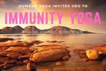 Immunity Yoga - June Series
