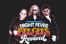 Night Fever - BeeGees Revival