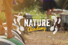 Nature Play Mentor Training