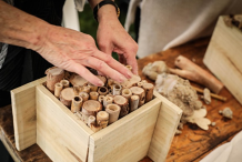Bee & Insect Hotel Making Workshop