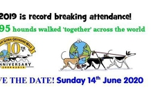 2020 Great Global Greyhound walk Launceston Leg