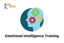 Emotional Intelligence 1 Day Virtual Live Training in Hobart