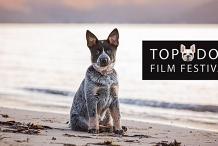 Top Dog Film Festival - Darwin Deckchair Cinema Tues 11 Aug 2020