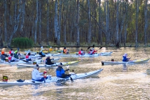 Massive Murray Paddle - Incorporating the Murray Marathon