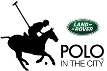 Land Rover Polo in the City