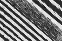 WA Now – Tom Mùller: Monolith Scores