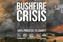 Level Up Studio Bushfire Crisis Art Show