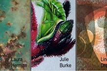 Exhibitions Opening : Thursday 23 July