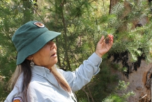 Guided Indigenous Walks in Dharawal National Park - Minerva Pool Trail