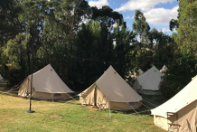 Festival Accommodation