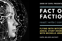 Flying with Witches: Aerial Stunt Doubling   Fact or Faction