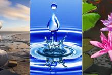 Mindfulness/Meditation Webinar Series