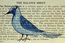 Paper Animal Collage @ Devonport Library