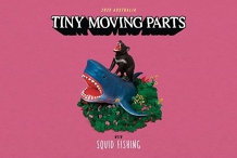 Tiny Moving Parts (USA) Live in Sydney - 18+