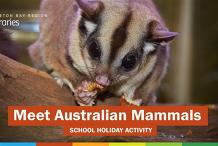 Meet Australian Mammals (all ages) - Strathpine Library