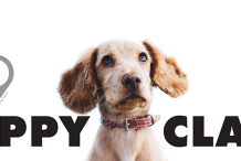 Club K9 Puppy Class (6 -20weeks) - Wednesday