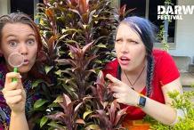 Team Fun's DIY Scavenger Hunt   Darwin Festival