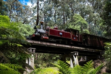 Photography Course  18-Puffing Billy Photo Event