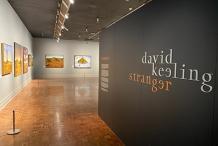 David Keeling: Stranger