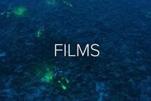 Ocean Film Festival World Tour - Brisbane 19 July 2020