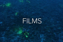 Ocean Film Festival World Tour - Darwin 23 June 2020