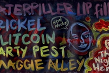 CLF Debut! w/ Party Pest + Maggie Alley + Trickel + Clitcoin