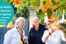 Guided Walks of the Royal Botanic Garden Sydney