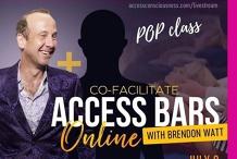 Online Access Bars Class